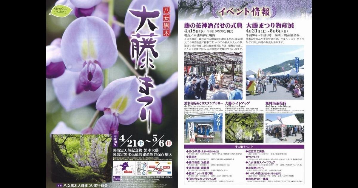 今年も黒木大藤祭りが開催されます!