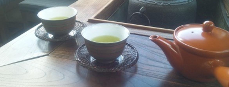 お茶のたつみ園